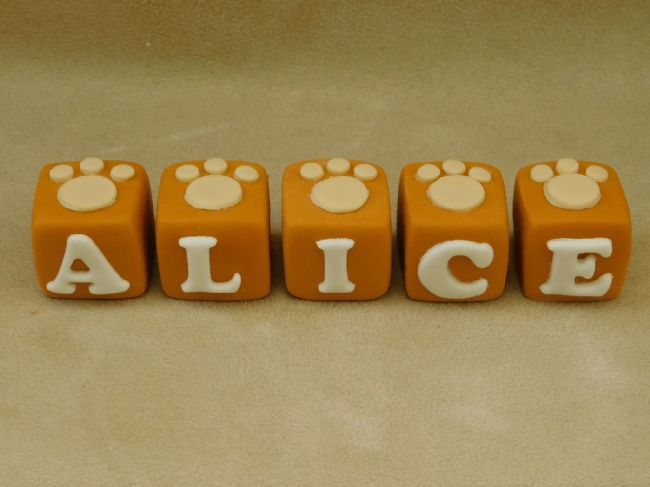 Name Blocks with Paw Prints